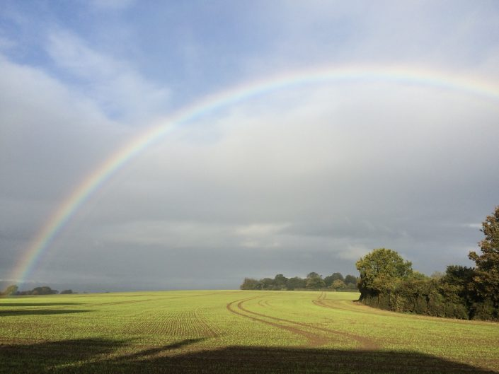 A colourful rainbow over Charing farm land