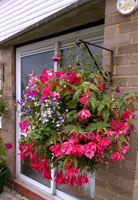 Pretty floral hanging basket